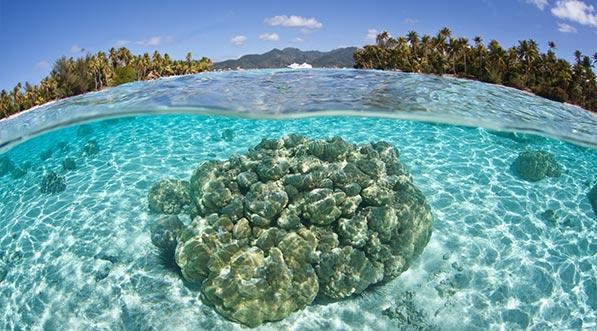 yacht-charter-itinerary-polynesia-moorea-2.jpg