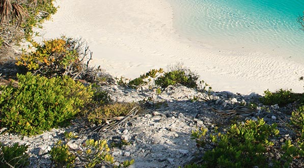 yacht-charter-itinerary-the-bahamas-shroud-cay-2.jpg