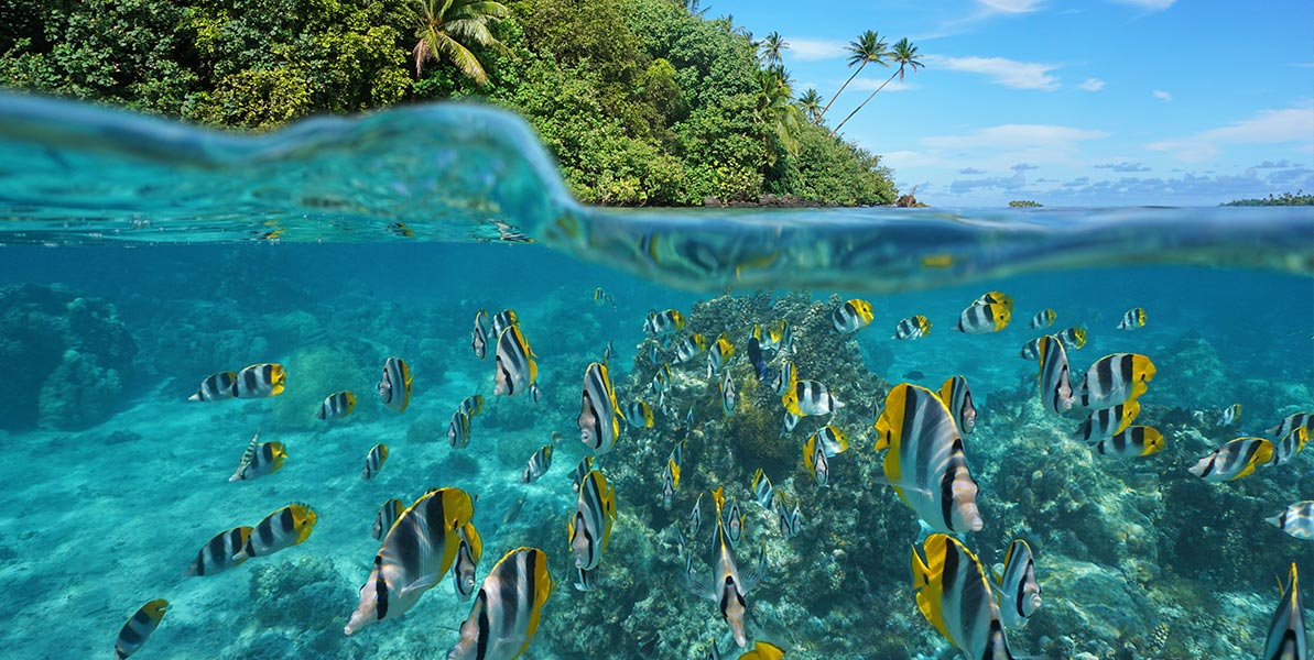 yacht-charter-itinerary-polynesia-hauhine-1.jpg