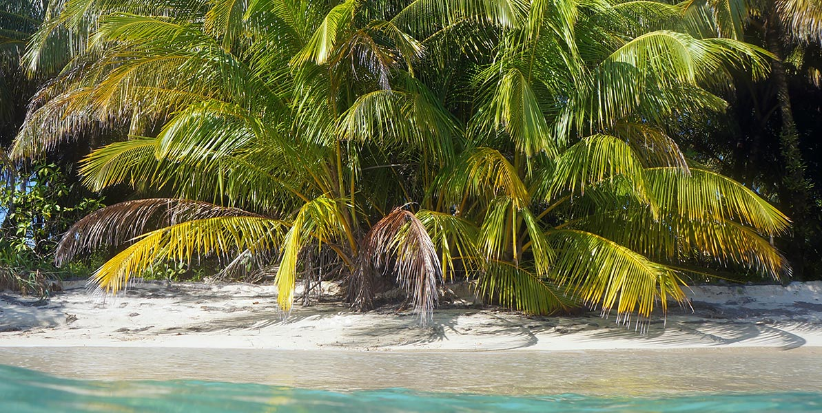 yacht-charter-itinerary-polynesia-raiatea-1.jpg