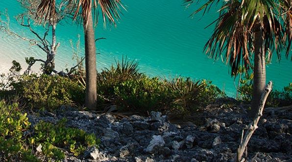 yacht-charter-itinerary-the-bahamas-shroud-cay-3.jpg